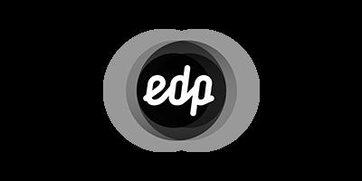 IT Consultancy - EDP
